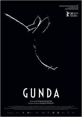 贡达 Gunda