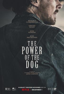 犬之力 The Power of the Dog