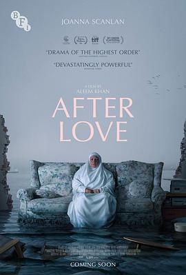 爱的后事 After Love